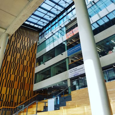 Inside the building, looking up a large flight of steps towards the library, with sunlight pouring through the glass roof.